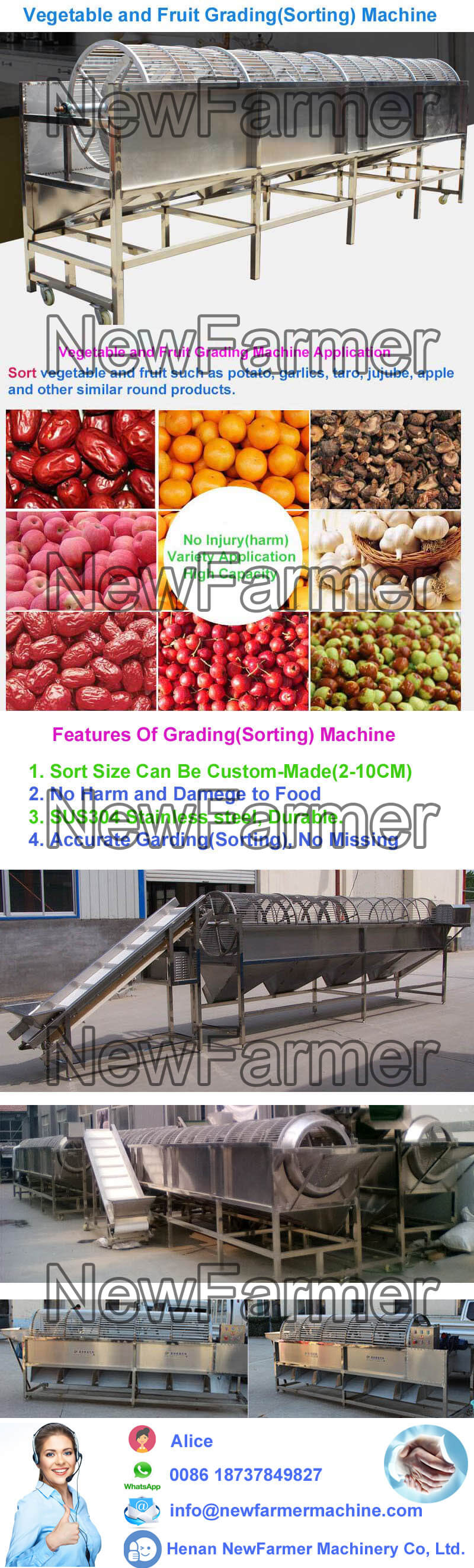 Vegetable and Fruit Sorting Machine