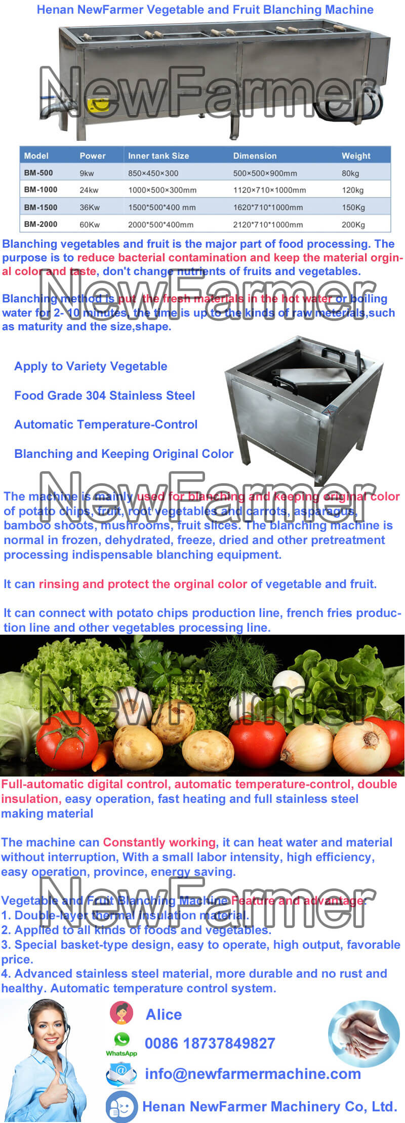 Vegetable and Fruit Blanching Machine