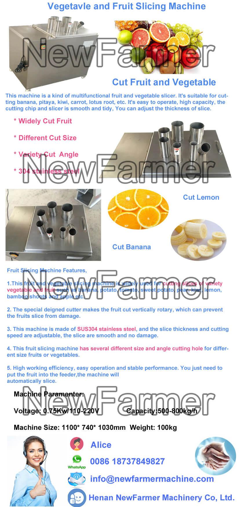 Vegetavle and Fruit Slicing Machine