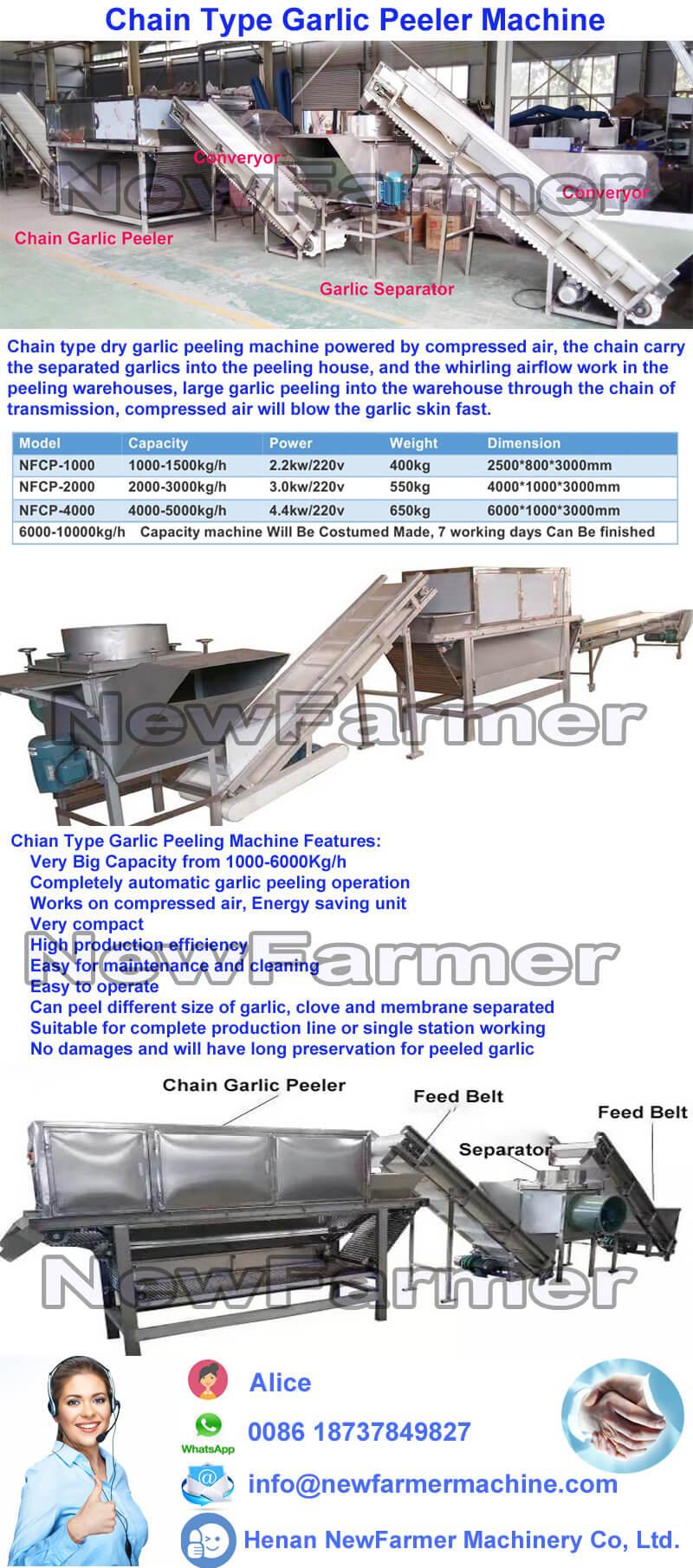 chain garlic peeler machine