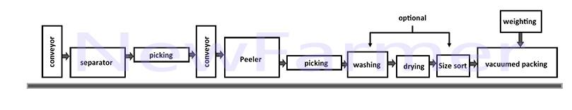 garlic peeling machine line design picturer